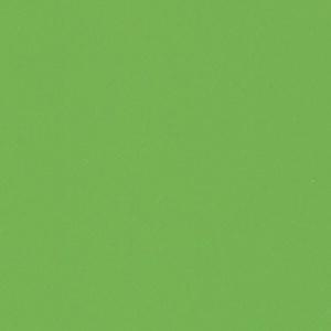 Цвет/материал - 3088 Яблоко глянец