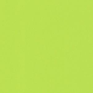 Цвет/материал - 3089 Лайм глянец