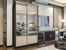 Двухдверный шкаф купе с зеркалом в прихожую «Манхеттен – 4»