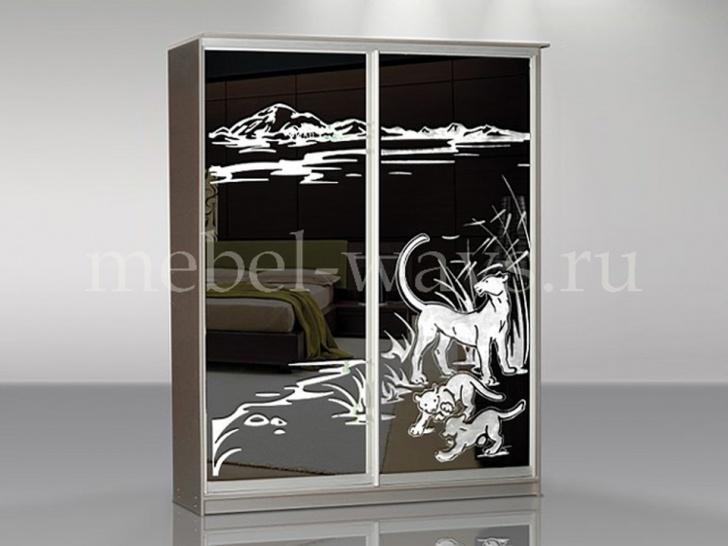 Шкаф купе с рисунком на зеркале «Концепт – 2»