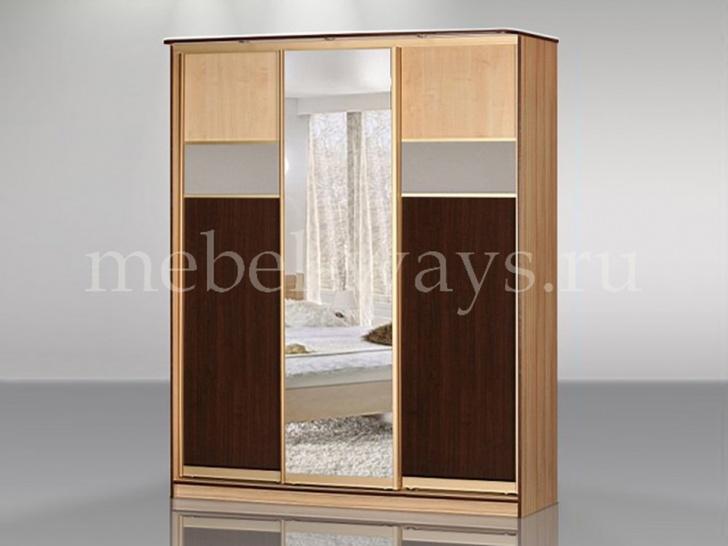 Шкаф-купе с комбинированными дверями «Концепт – 25»