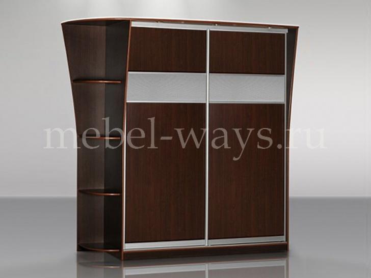Шкаф купе без зеркала в прихожую «Концепт – 9»