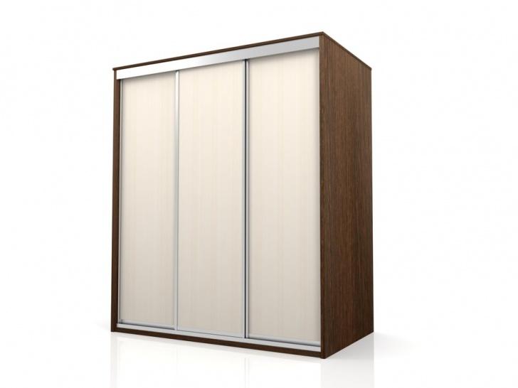 Шкаф-купе трехдверный без зеркала «Отличный – 1», вариант расцветки