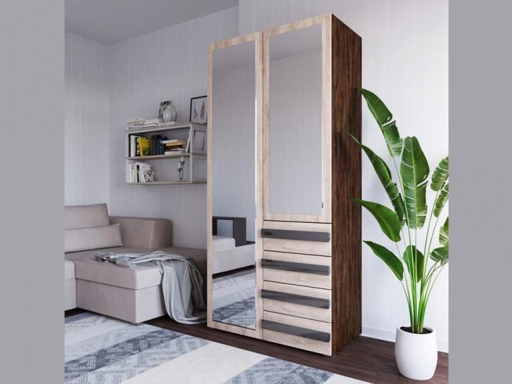 Шкаф с зеркальными дверцами «Дизайн Люкс – 8»