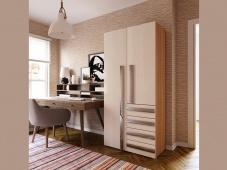 Шкаф со встроенным комодом «Дизайн Люкс – 4»